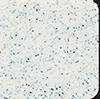 Granite white / Бял гранит код: 01